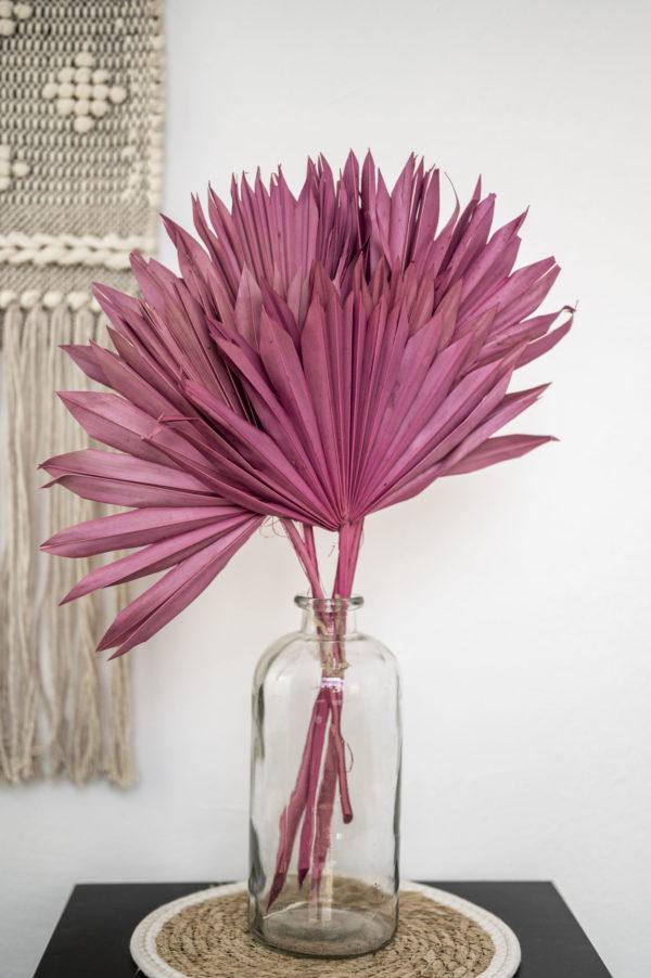palmblätter erika