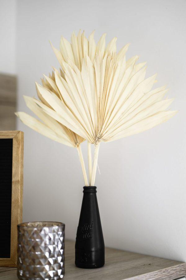 getrocknete Palmblätter