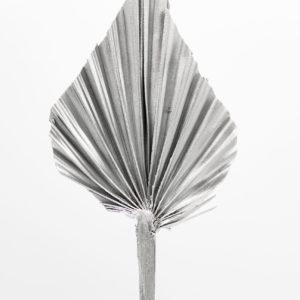 Palmspeer silber