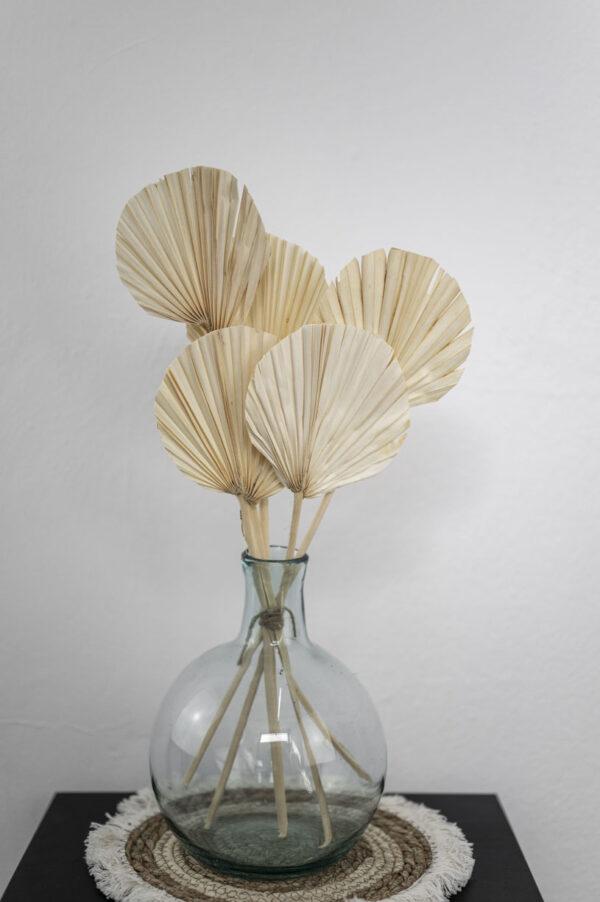 palmblätter rund