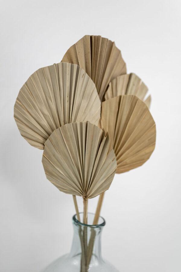 palmblatt rund