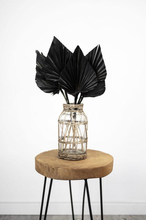 Palmspeer schwarz