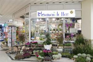 Blumenladen Ellwangen